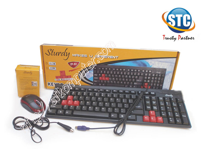 Keyboard + Mouse Sturdy PS2